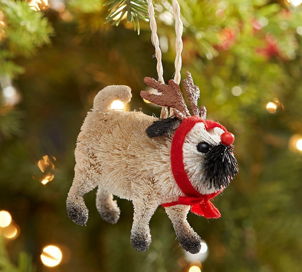 Bottle Brush Pug Ornament Pottery Barn Au
