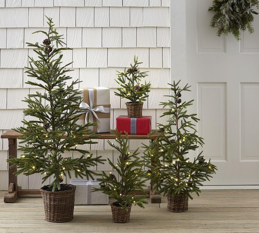 Faux Lit Pine Tree In Basket Pottery Barn Au