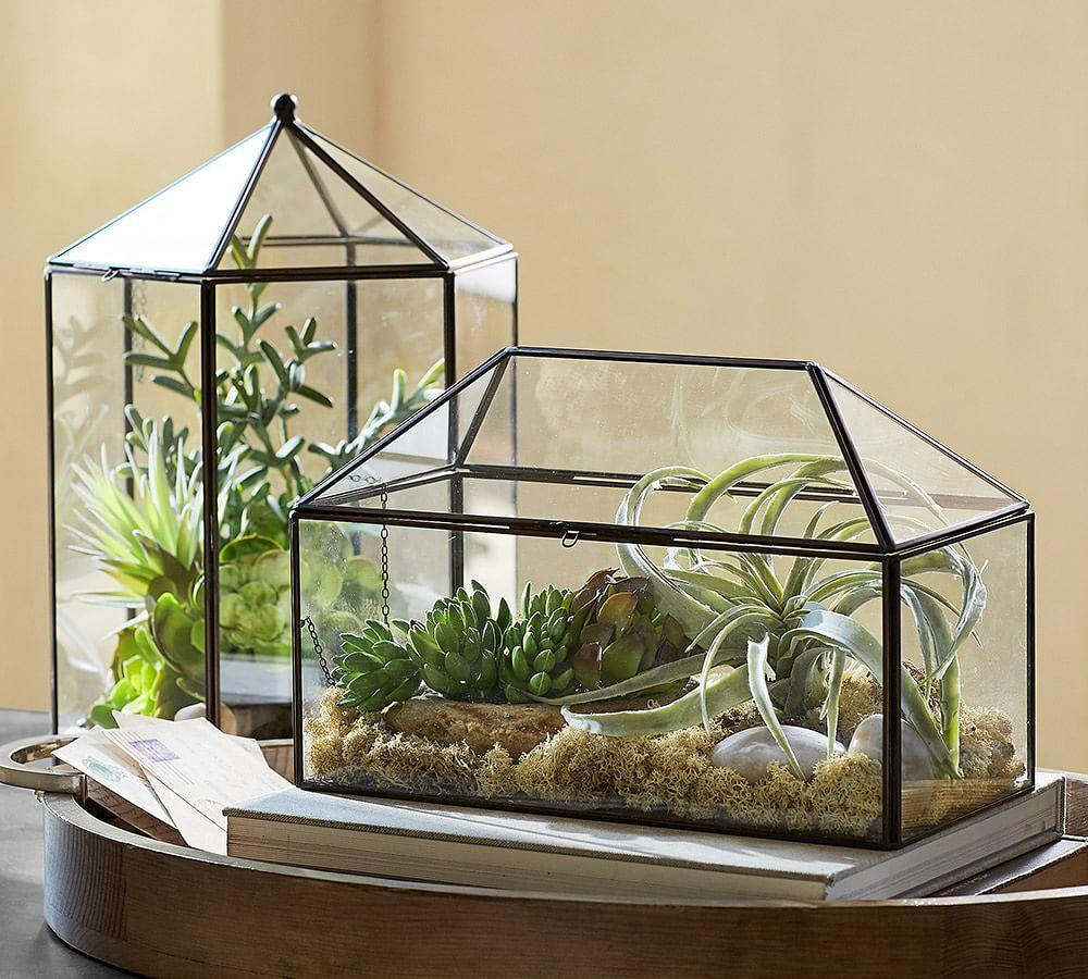 glass terrarium pottery barn au. Black Bedroom Furniture Sets. Home Design Ideas