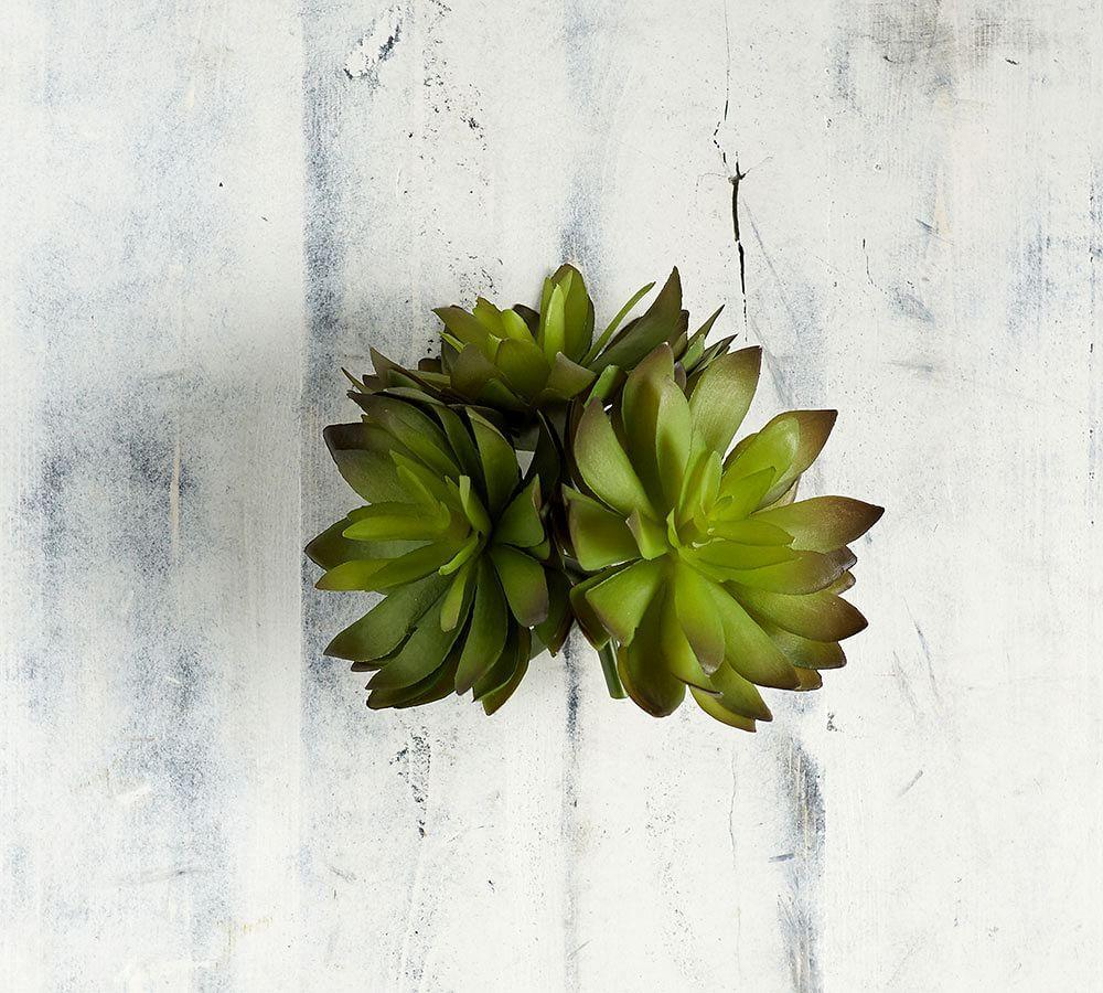 Faux Green Thorned Succulent