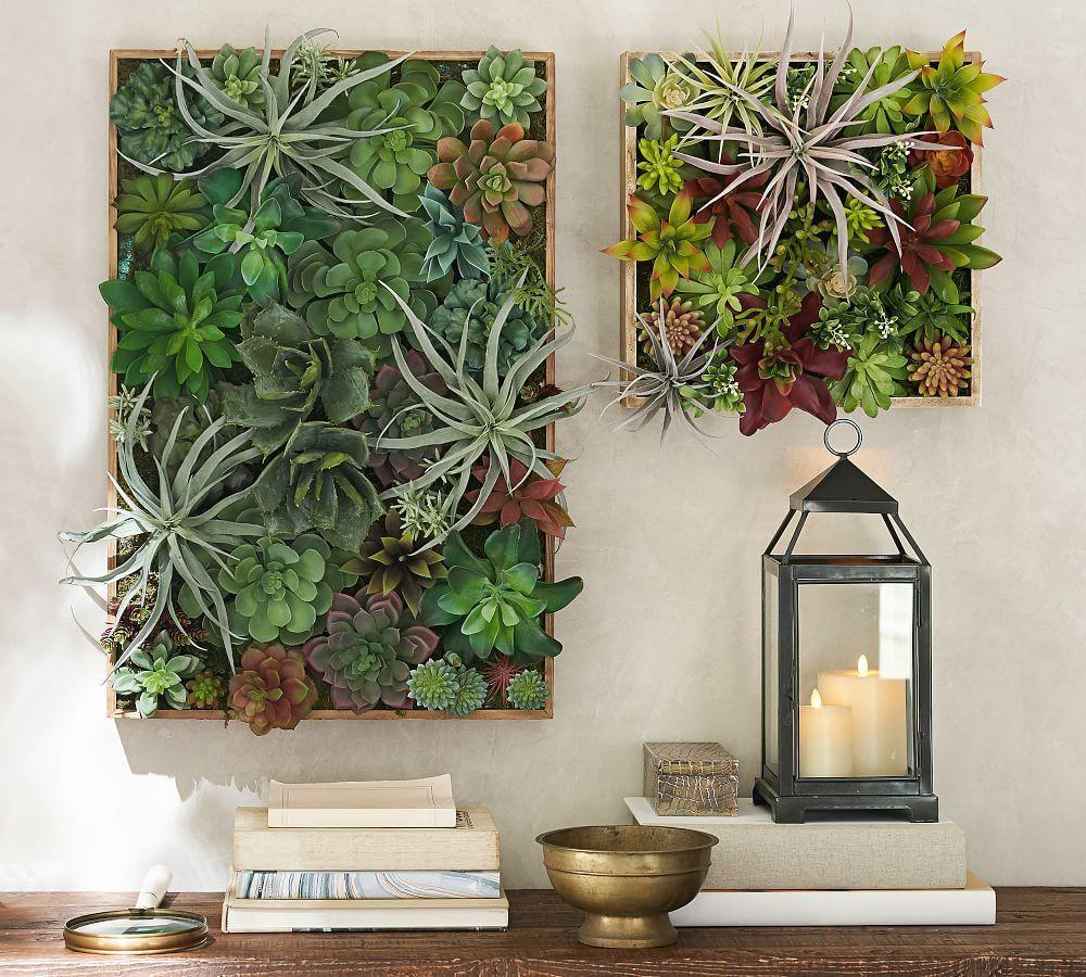 Succulent Wall | Pottery Barn AU