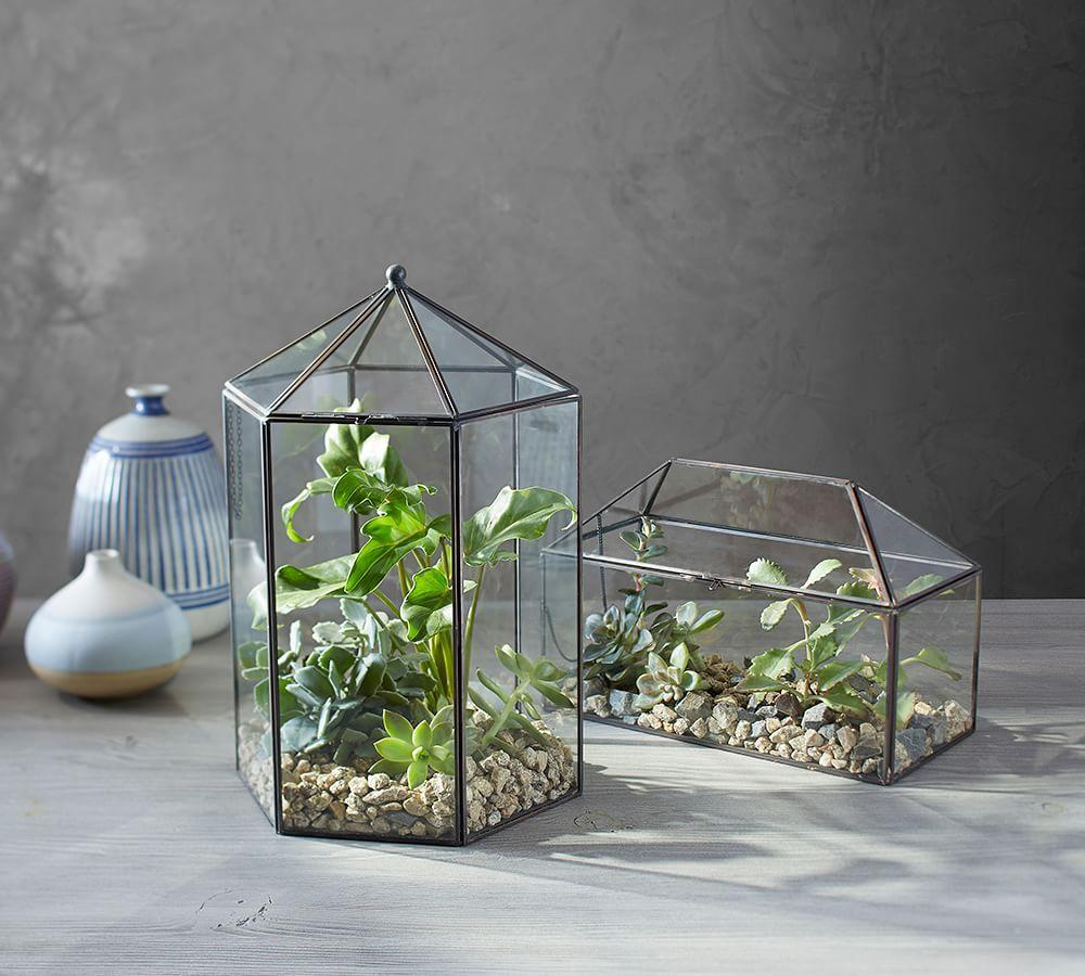 Glass Terrarium Pottery Barn Au