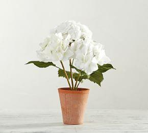 Faux Potted Hydrangea - White