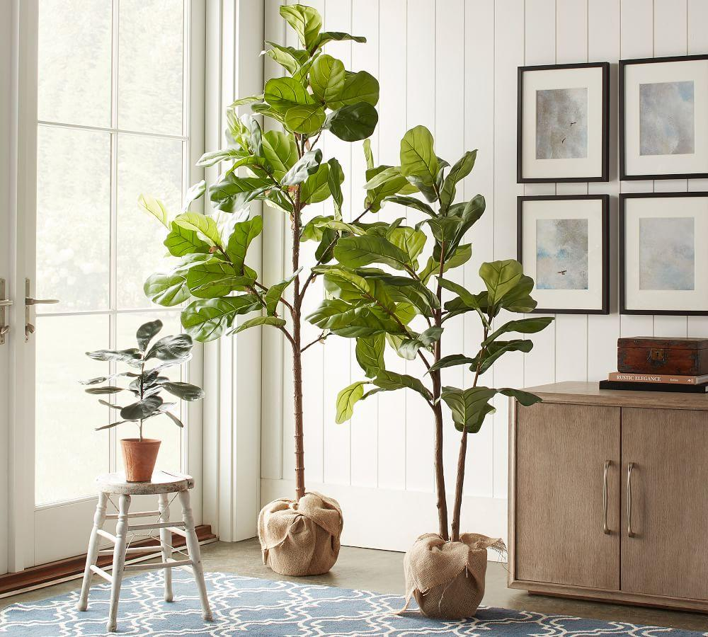 Faux Potted Fiddle Leaf Tree Pottery Barn Au