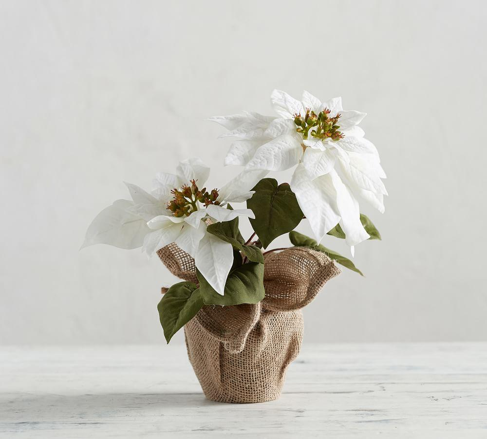 Faux Potted White Poinsettia