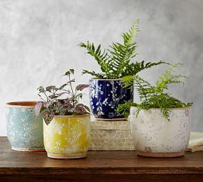Ceramic Cachepot Collection - Floral