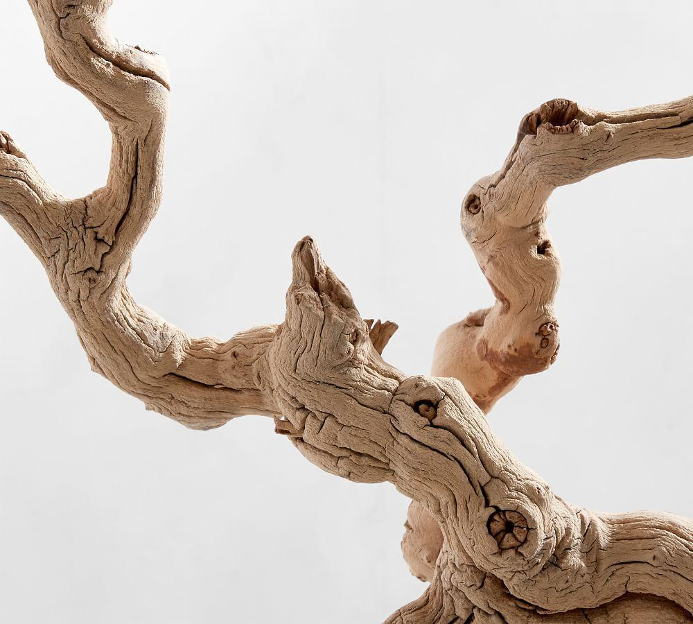 Dried Grapewood Branch