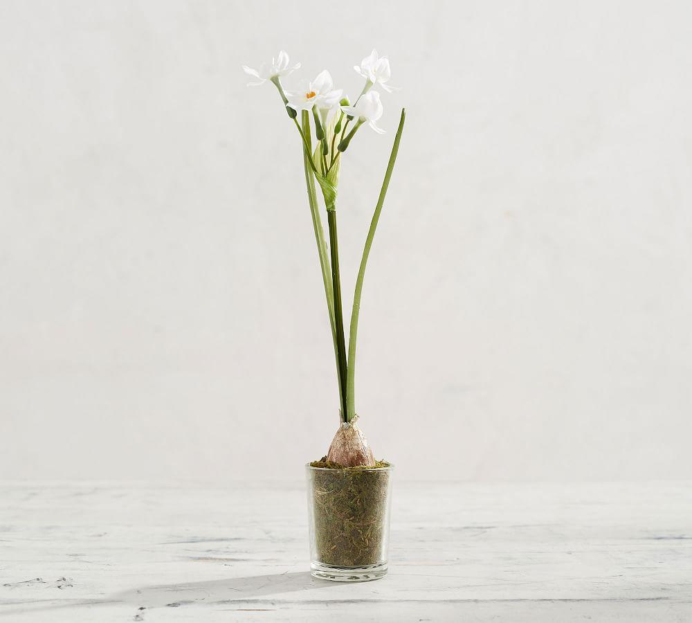 Faux Potted Paperwhites in Glass Vase