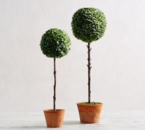 Faux Boxwood Ball Topiary Trees