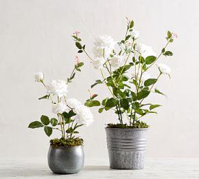Faux Potted White Roses